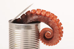 Can of octopus Royalty Free Stock Photography