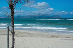 Can Picafort beach Majorca Stock Image