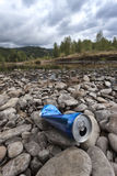 Can on the rocks in the river. Stock Image