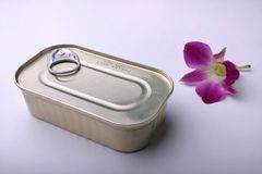 Can of Sardine. Sardine can and orchid stock image