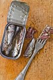 Can of sardines. Opened can of sardines on a wooden chopping board royalty free stock image