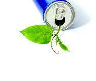 Can and small tree concept Royalty Free Stock Image