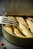 Can with smoked Baltic sprats. Royalty Free Stock Photo
