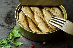 Can with smoked Baltic sprats. Can with smoked Baltic sprats and fork Stock Photos