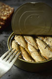 Can with smoked Baltic sprats. Royalty Free Stock Images