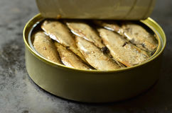 Can with smoked Baltic sprats. Stock Photos