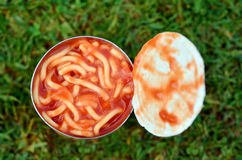 Can of spaghetti. On green grass background. Concept photo of food Royalty Free Stock Photo