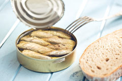 Can of sprats Royalty Free Stock Photo