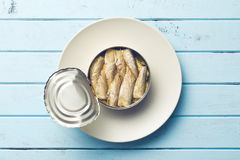 Can of sprats Royalty Free Stock Image