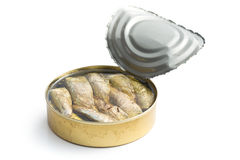 Can of sprats Stock Images