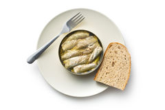 Can of sprats Royalty Free Stock Photos
