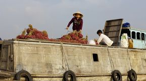 Can Tho Floating Market Vietnam Stock Photography