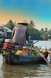 Can Tho, Vietnam - 5 March 2015: Woman moving by rowing boat, the most common transportation mean of rural people in Mekong delta Stock Photo