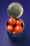 Can of tomatoes. Rusty can of pearl tomatoes Royalty Free Stock Photo