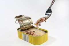 Can of tuna and a fork. A closeup of a can of tuna fish, with a fork being used to lift out a chunk of fish from it Stock Photography