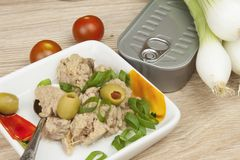 Can of tuna, a healthy meal with vegetables. Fast food preparation Stock Photo