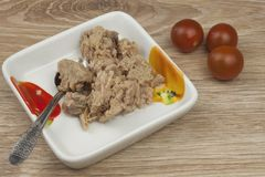 Can of tuna, a healthy meal with vegetables. Fast food preparation Stock Images