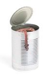 Can Of Worms. A tin can full of earthworms on a white background. One worm is hanging from the side stock photography