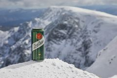A can of Zlaty Bazant beer on a mountain stock photo