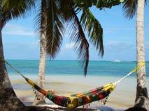 cana多米尼加共和国的punta共和国 免版税图库摄影
