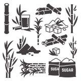 Cana-de-açúcar, ícones da silhueta do vetor da colheita da planta da cana-de-açúcar isolados no fundo branco ilustração do vetor