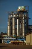 Cana-de-açúcar da fábrica Imagens de Stock Royalty Free