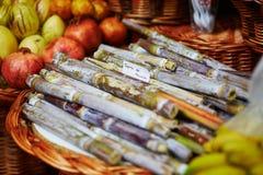Cana-de-açúcar verdes no mercado do fazendeiro em Funchal, Madeira, Portugal Fotografia de Stock Royalty Free