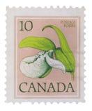 CANADÁ - CIRCA 1977: un sello impreso en las demostraciones Frankli Imagen de archivo