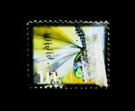 Canadá más darner (canadiensis de Aeshna), insecto beneficioso definitivo imagen de archivo libre de regalías
