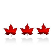 Canada. The Flag of Canada with maple leaves Stock Photography