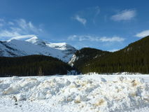 Canada 903. Snow capped mountains in the beautiful blue skies of Jasper National Park Canada stock photo