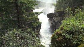 Canada alberta athabasca falls at gorge. Video of canada alberta athabasca falls at gorge stock video footage