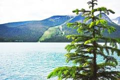 Canada_alberta_emerald imagenes de archivo