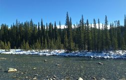 Canada Alberta Kananaskis Elbow River Royalty-vrije Stock Fotografie