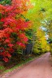 Canada barwy jesieni Zdjęcie Stock