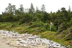 Canada beach Royalty Free Stock Image