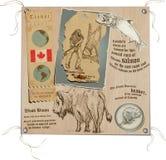 Canada - Beelden van het Leven, het Wild Stock Foto's