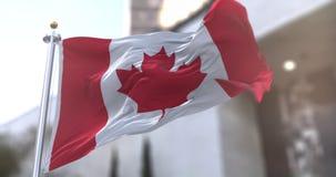 Canada or Canadian Flag flagstaff Slow motion seamless loop