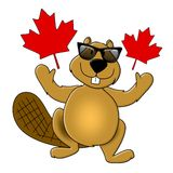 Canada Day Beaver Wearing Sunglasses. An illustration featuring the popular beaver wearing sunglasses and surrounded by Canada Day maple leaves Stock Photos
