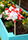 Canada Day decoration in a flower box royalty free stock photos