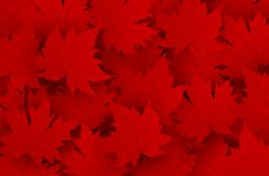 Canada day design of red maple leaves background. With copy space vector illustration vector illustration
