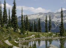 Canada de Colombie-Britannique de montagne de Whistler photos libres de droits