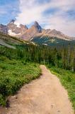 Canada de sentier de randonnée de montagne Images libres de droits