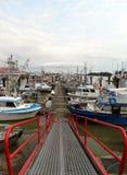 Canada de Steveston de port de pêche AVANT JÉSUS CHRIST Photos libres de droits