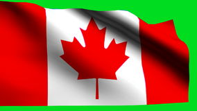 Canada flag. Background HD 1080i stock video footage