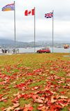 Canada Flag, Fall Color, Autumn leaves, City Landscape in Stanley Paark, Downtown Vancouver, British Columbia Royalty Free Stock Photo