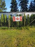Canada Flag on Fence royalty free stock photo