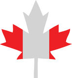 Canada Flag Maple Leaf Stock Image