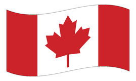 Canada flag with maple leaf waving vector symbol icon design. Stock Image