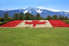 Canada flag and mountains Stock Photo